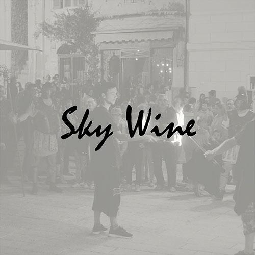 Sky-Wine logo
